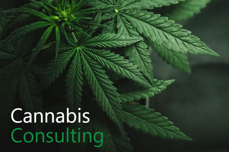 Green Belt Strategies Cannabis Consulting Firm