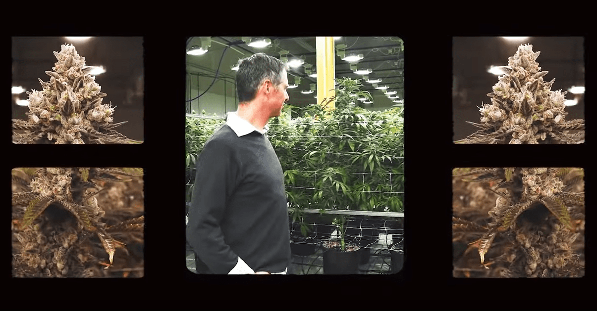 Deep Roots Episode 1 with Cameron Bravmann Green Man Cannabis