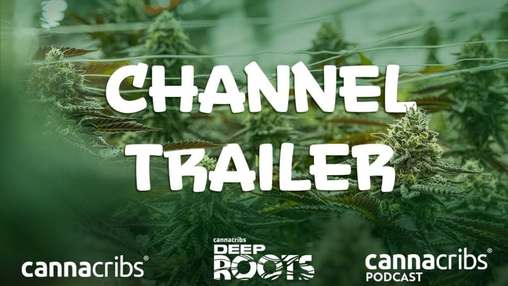 cannacribs deep roots podcast channel trailer