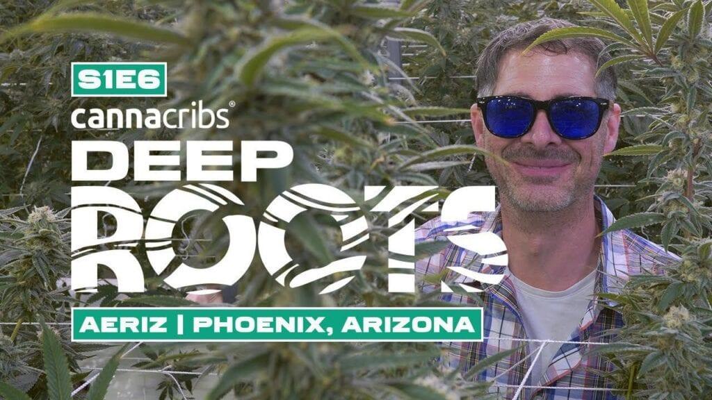 Cannacribs Season 1 Episode 6 Aeroponic grow in Phonex Arizona Prop 207